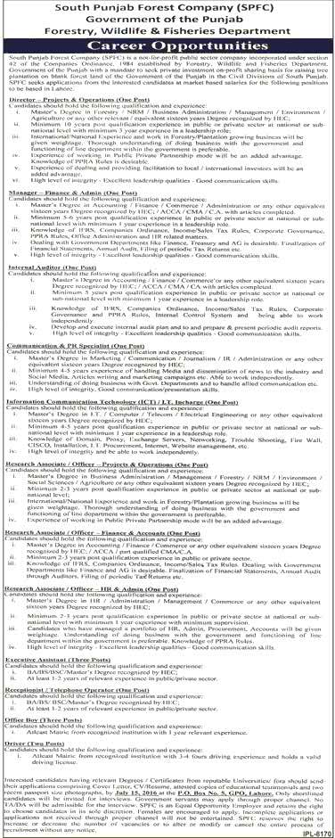 South Punjab Forest Company Jobs