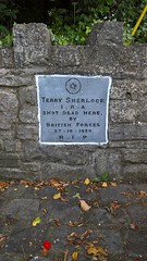 Photo of Grey plaque number 41560