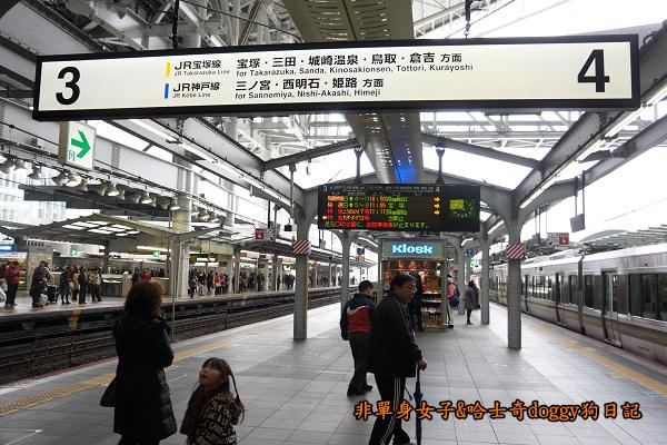日本JR地鐵電車便當01