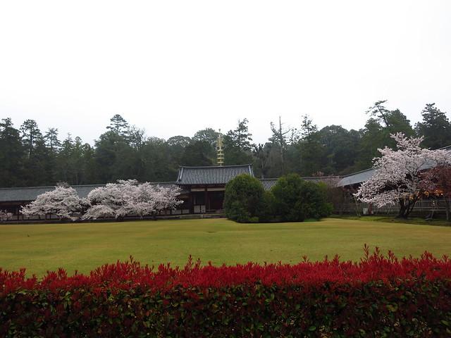Nara with mi Familia