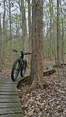 2015 bike 180 : day 50