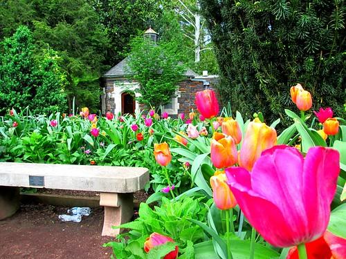 Duke Garden
