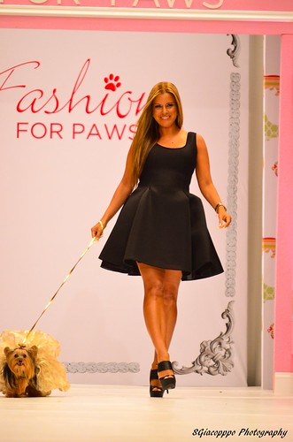 2015 WHS Fashion For Paws