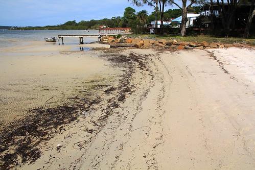 Beach at Wombo St, North Pindimar Tea Gardens 17.4.2015