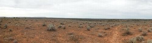 Outback Gibber Plain