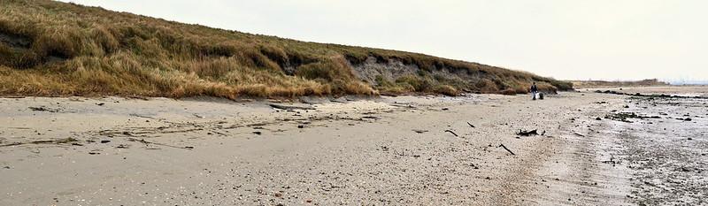 Clean beach 1