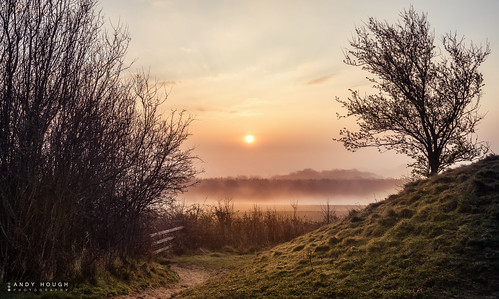 morning trees england sky sun mist sunrise view unitedkingdom path sony mound wallingford goldenhour wittenhamclumps a99 sonyalpha andyhough slta99v andyhoughphotography