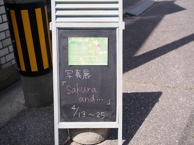 150419_SakuraSH-1
