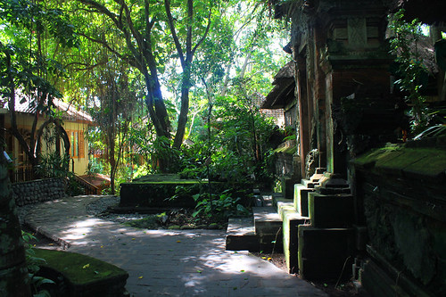 Bali Wellness Retreat (14)