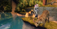 Manipulating the Cheetah for The Zebras