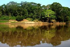 Amazon River 亞馬遜河 2014