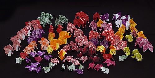 Origami Elephants Guinness World Record