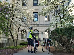 Dogwood at USDA in #bikedc #30daysofbiking