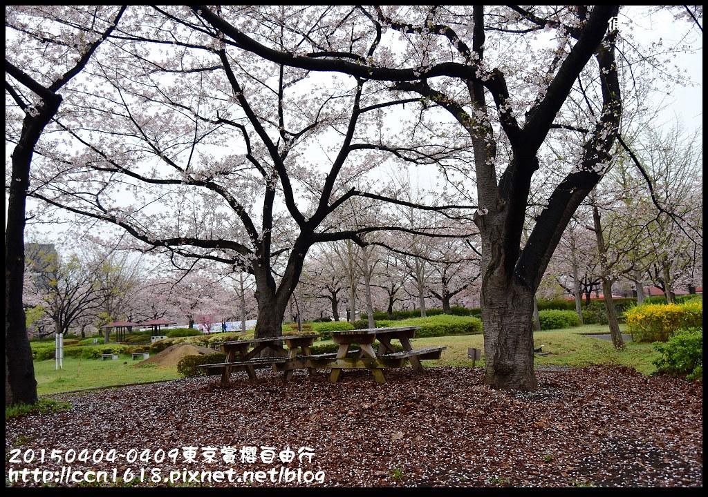 20150404~0409東京賞櫻自由行DSC_2480