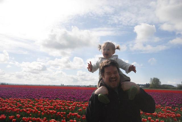 TulipsMaggieScott