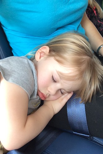 Lucy did this approximately 15 minutes before landing in Austin. Two hour flight. She waited until the end to fall asleep.
