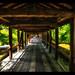 Tofukuji-Temple Bridge