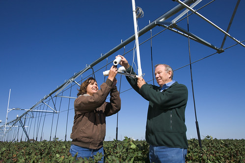USDA-ARS agricultural engineers Susan O'Shaughnessy and Nolan Clark adjust the field of view for wireless infrared thermometers.