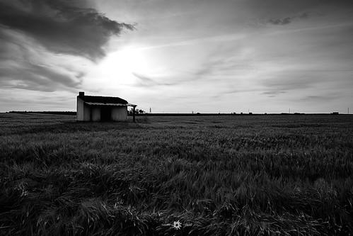 españa blancoynegro sol luces paisaje amanecer nubes campo infinito sombras lamancha manzanares casadecampo siembra llanura