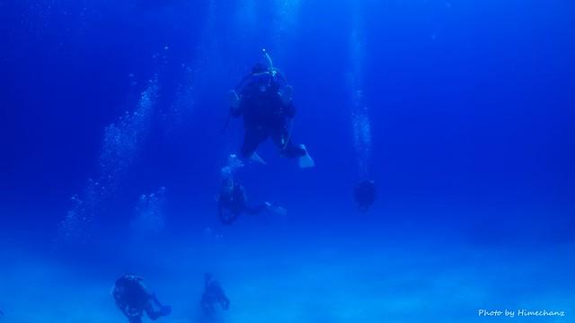 青い海をたっぷり楽しんでいただきました♪