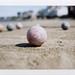 Beach Bocce // Summer 2013 by Elizabeth Taylor