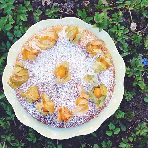 sticky lemon cake, april 2015