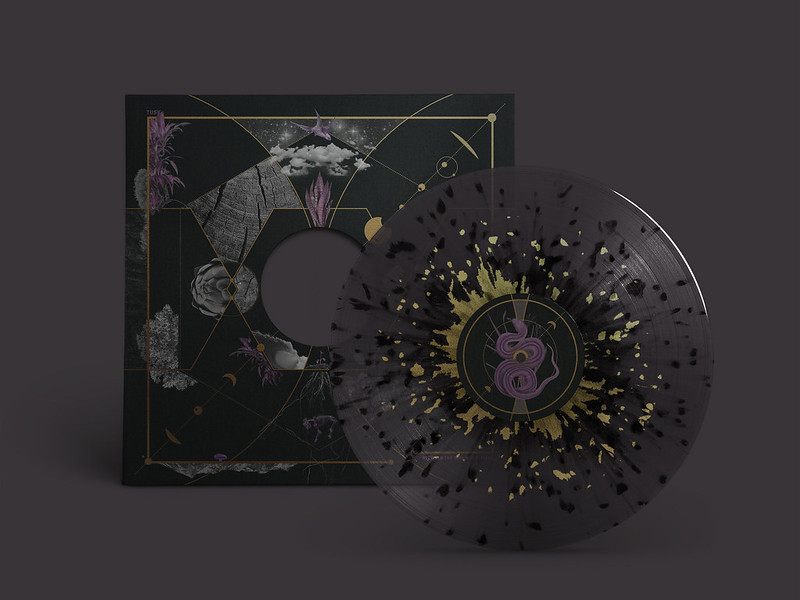 TUSK vinyl package mockup