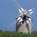 windmill by rio.guenhael
