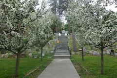 Hartsdale Pet Cemetery