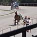Kasaške dirke v Komendi 02.07.2016 Razno