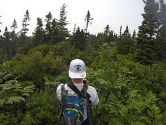 High Head Trail