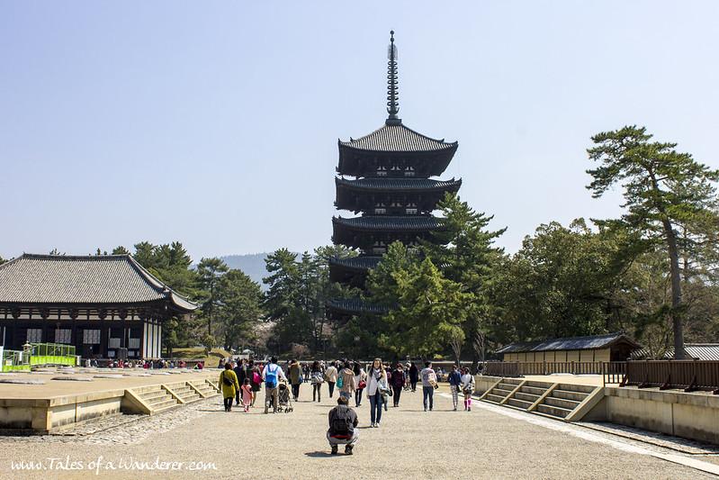 奈良 NARA - 興福寺 Kōfuku-ji