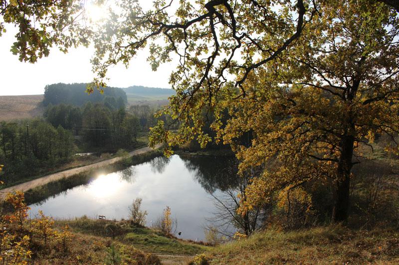 Вид с горы Радогоща