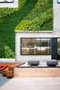 Living Wall at Tripit, Airbnb, Pinterest Headquarters by nan palmero