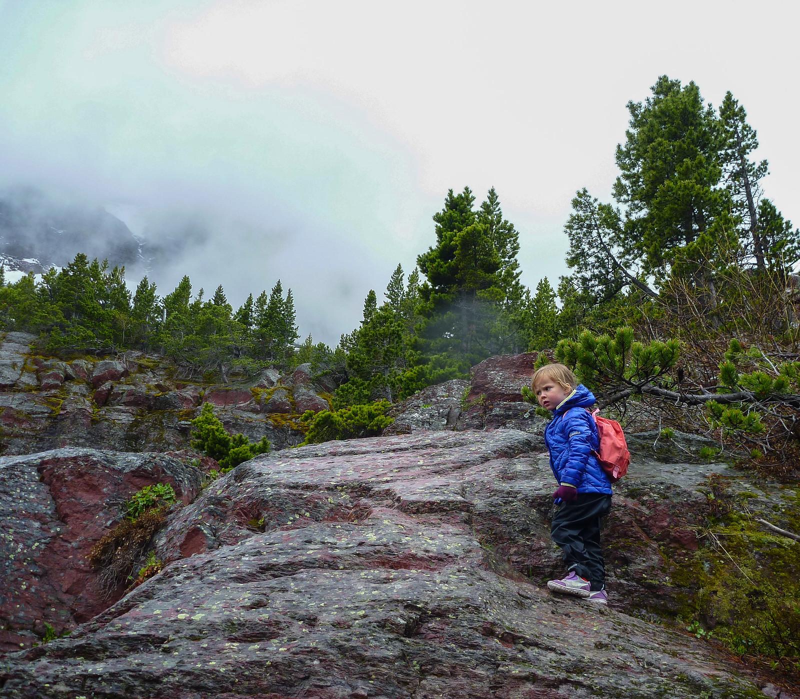 2015-05-16 Red Rock Falls -1090119.jpg