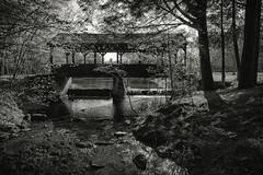 Stratton Brook State Park, Simsbury, Connecticut