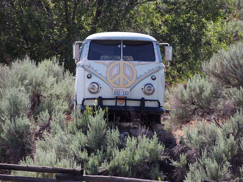 Riverside VW Bus