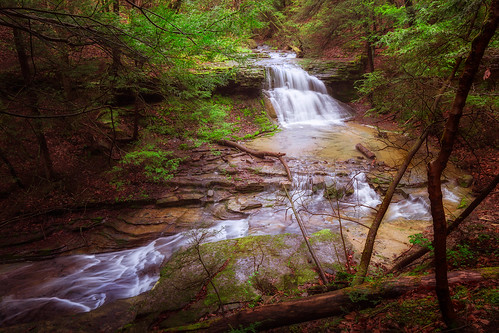 autumn ny newyork color tree nature water landscape outdoors us waterfall spring woods stream unitedstates union wideangle upstateny falls upstatenewyork brook centralnewyork newyorkstate dri nys southerntier ndfilter dynamicrangeincrease centralny grayscreek colorefexpro ibmglen watermancenter broomecounty watermanconservationeducationcenter nikond7200 nikcollection adobephotoshopcc tokina1116mmf28atx116prodxii andrewscholtz ascholtz101 adobelightroomcc icendfilter tokina1116mmf28atx116p watermanconservationeducation neutraldensiityfilter
