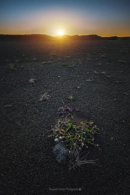 Midnightsun @Iceland