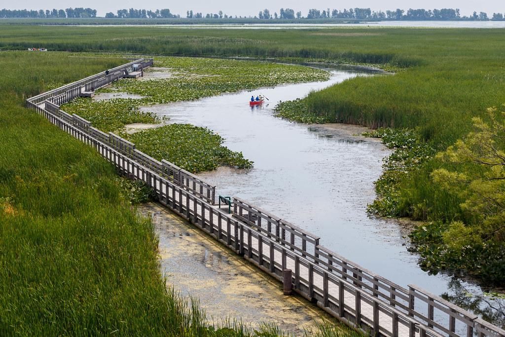 Point Pelee National Park Essex County Ontario Around