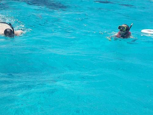 underwater15 snorkeling stingraycity