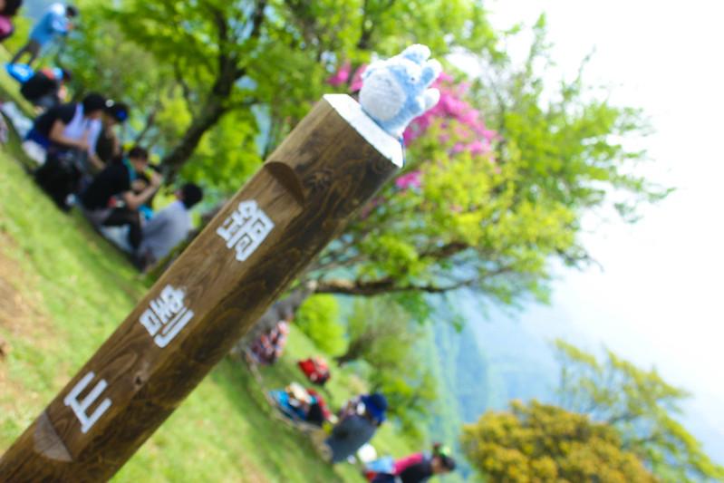 2014-05-24_00240_鍋割山.jpg