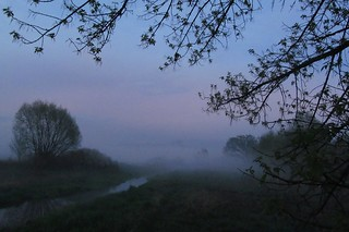 evening fog...  (2 photos)