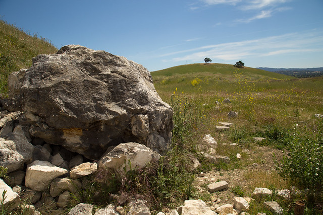 Tumbled Boulder in a Field