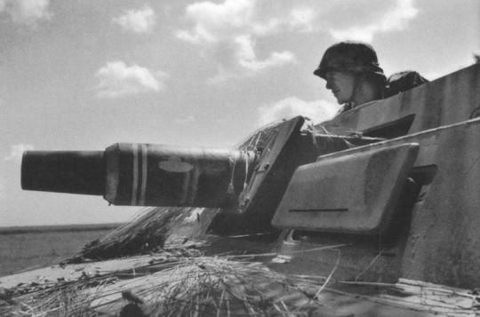 """Sd Kfz 251/9C (7.5cm) """"Stummel"""""""