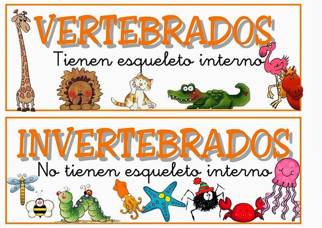 sistema nervioso de los animales vertebrados e invertebrados