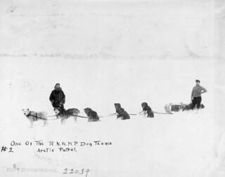 One of the RNWMP dog teams, Arctic patrol / Une des équipes canines de la R.G.C.N.-O., patrouille de l'Arctique