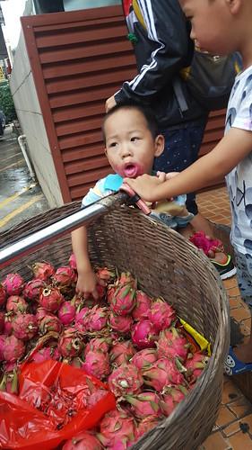 惠東 2016 kklkong 三天遊