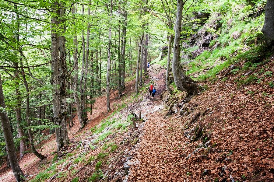 Ragoli, Trentino, Trentino-Alto Adige, Italy, 0.077 sec (1/13), f/8.0, 2016:06:30 13:06:35+03:30, 18 mm, 10.0-20.0 mm f/4.0-5.6