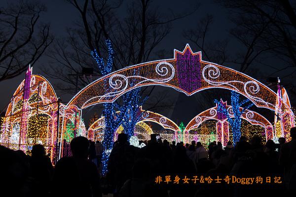 日本大阪城公園梅林城天守閣3D光之陣13